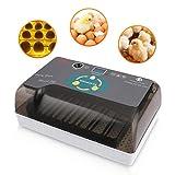Incubadora Automática de Huevos con Pantalla y Luz de LED...