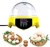 Huatuo 7 Huevos semiautomáticos Mini Digital Control de...