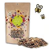 200 g de semillas de flores de prado para un pasto colorido...