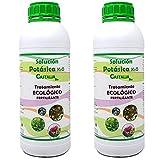 Castalia - Jabón Potásico Ecológico - Pack 2 de litros...