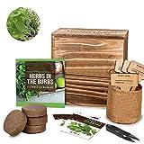 Kit de inicio de jardín de hierbas para interiores, kits de...