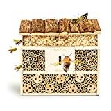 bambuswald© Hotel de Insectos con 3 Pisos y casa de...
