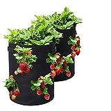 Tvird Bolsa para Plantas, 10Gallon Strawberry Plant Grow...