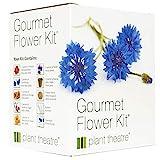 Plant Theatre - Kit de germinación Flores comestibles...