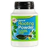 Descúbrete 75 G polvo hormona alentando
