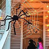 Joyjoz Telaraña de Halloween con araña Gigante, Tela de...