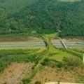 Ecoducto-paso-de-fauna