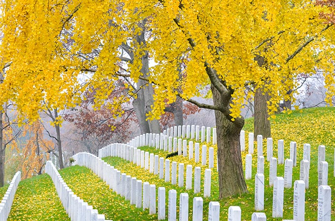 washington-dc-arlington-cemetery-virginia-usa