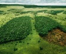 El planeta Tierra Es Mas Verde Hoy que hace 30 años