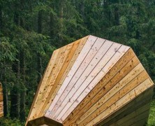 Escucha La Naturaleza Altavoces Del Bosque