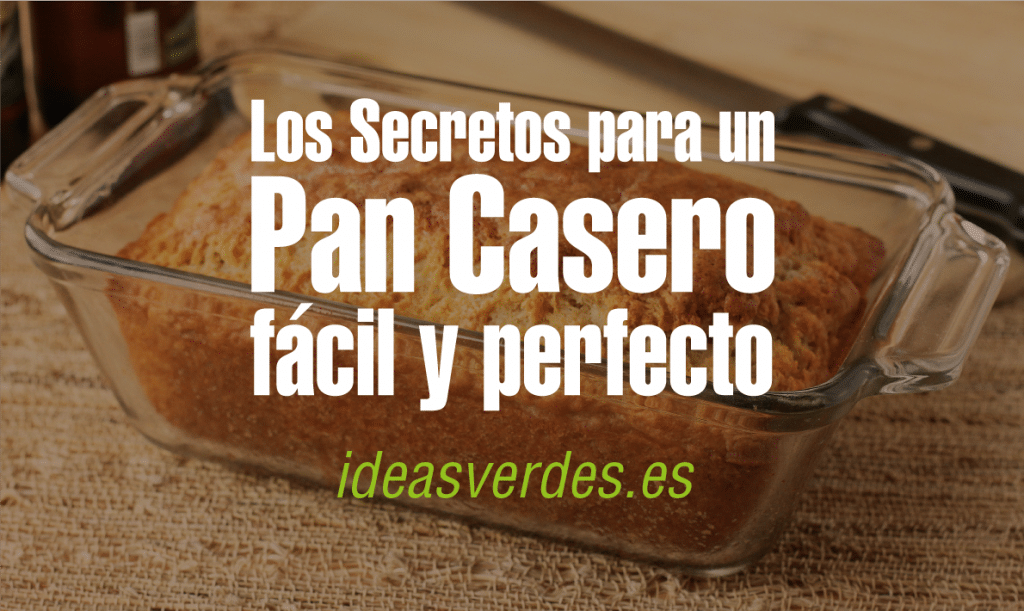 Pan-Ideas-Verdes