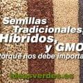 MARZO-Semillas