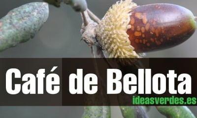 Cafe-de-Bellota