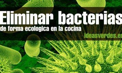 Eliminar-bacterias