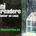 Miniinvernadero