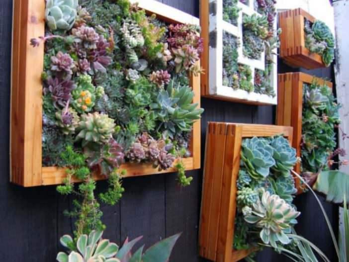 Como Hacer Un Jardín De Suculentas Vertical