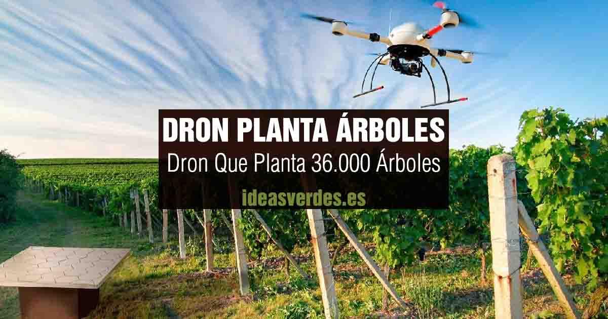 dron que planta arboles