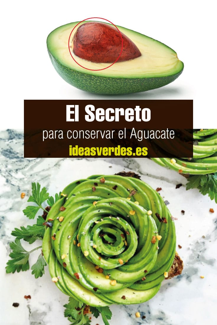 conservar aguacate abierto