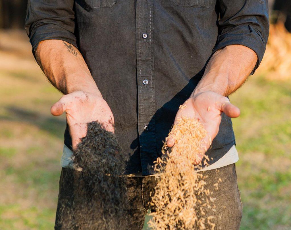 como hacer carbon ecologico con arroz