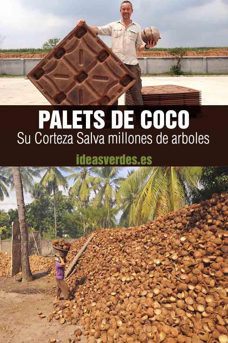 Palets De Coco