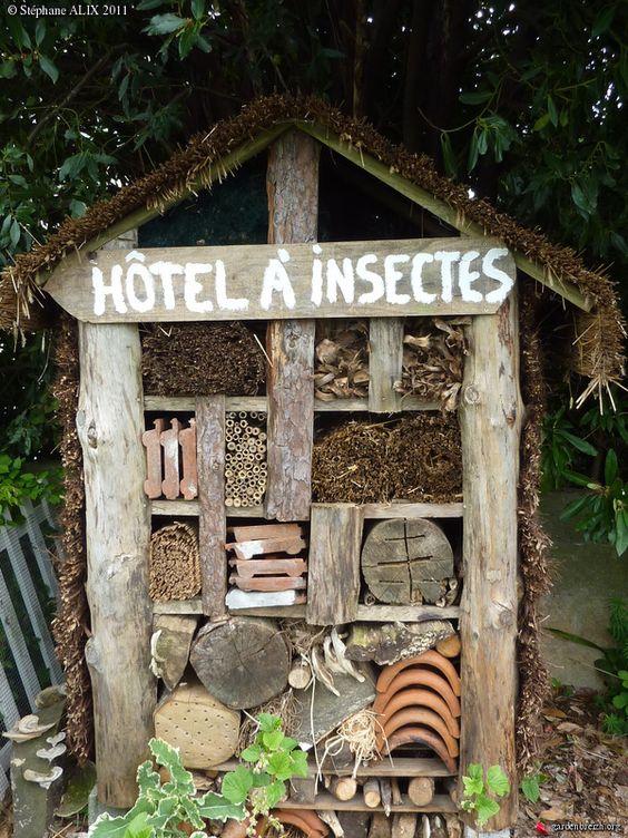 Hotel de insectos casero aprovechando elementos