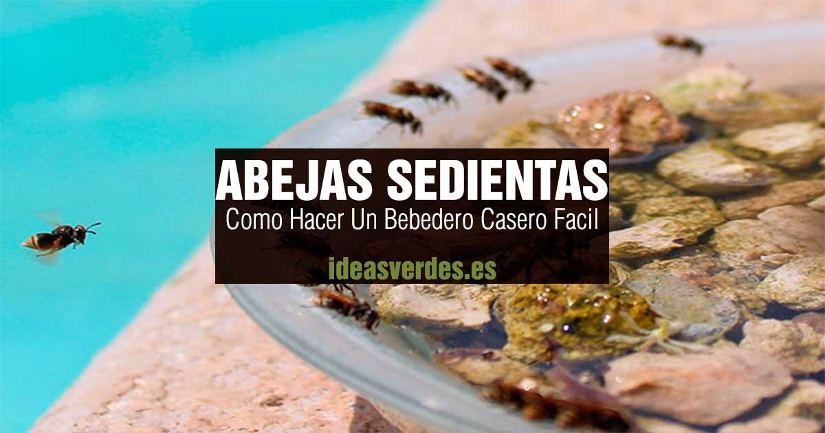 abejas sedientas bebedero casero