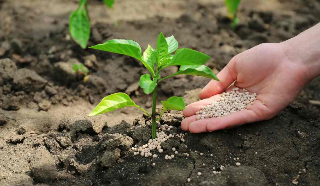 fertilizantes y tecnología