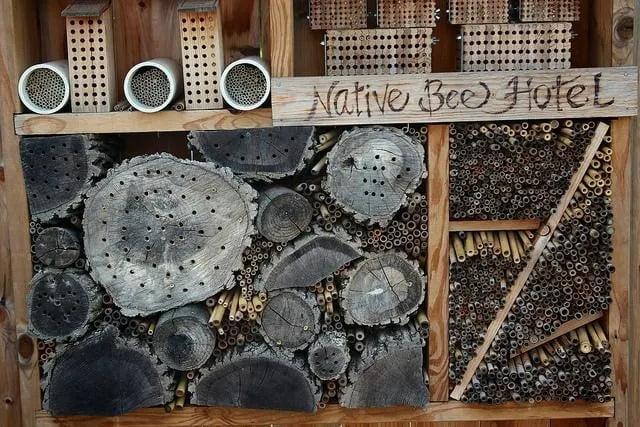 hotel de insectos casero con restos de troncos