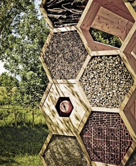 hotel de insectos casero panal de abejas