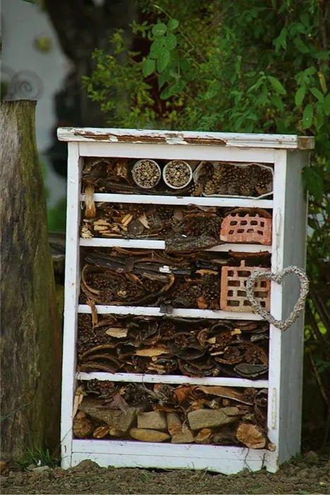 hotel de insectos casero reciclado