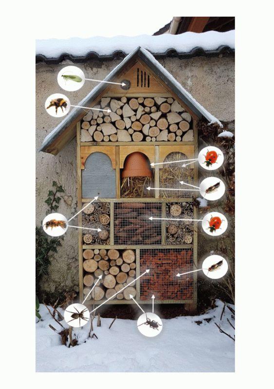 hotel de insectos completo y casero