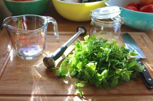 ingredientes aceite de oregano casero