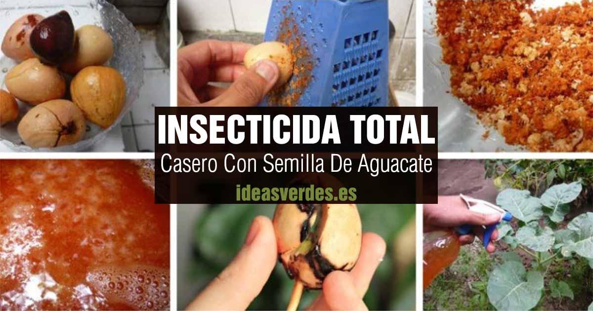 insecticida total con hueso o semilla de aguacate