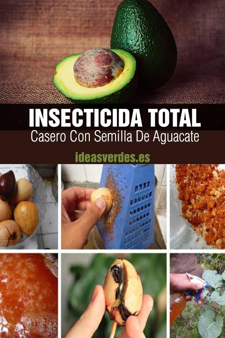 insecticida total con semilla de aguacate