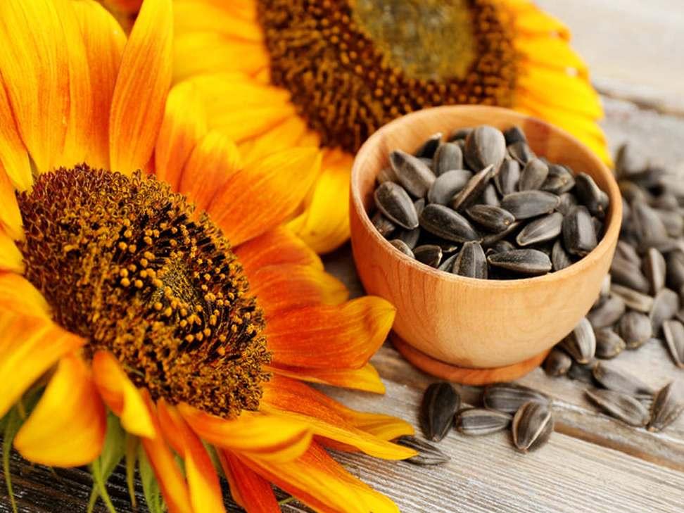 beneficios aceite ecológico dieta