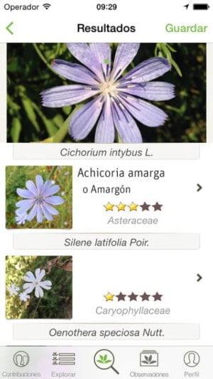 aplicacion para identificar plantas