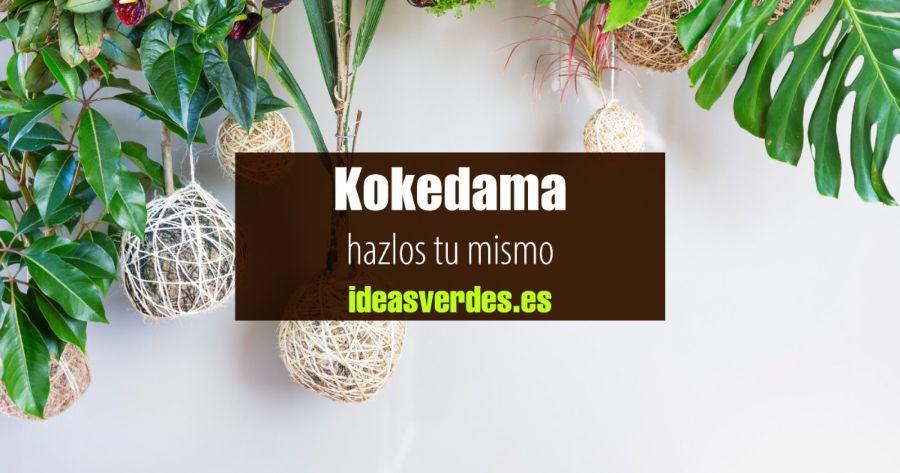 como hacer kokedamas
