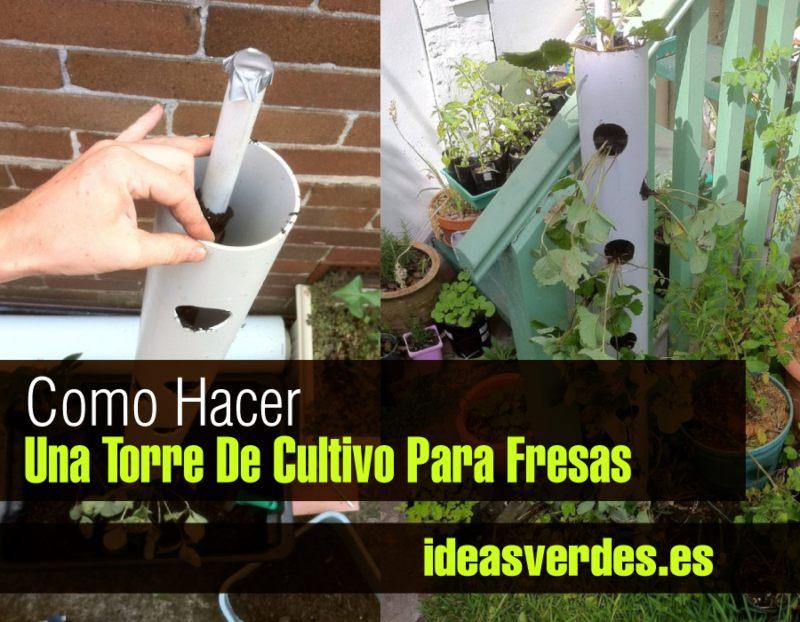 plantar fresas en vertical