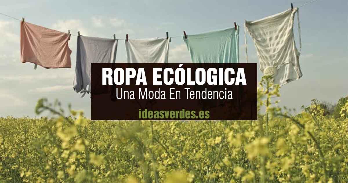 ropa ecologica en tendencia
